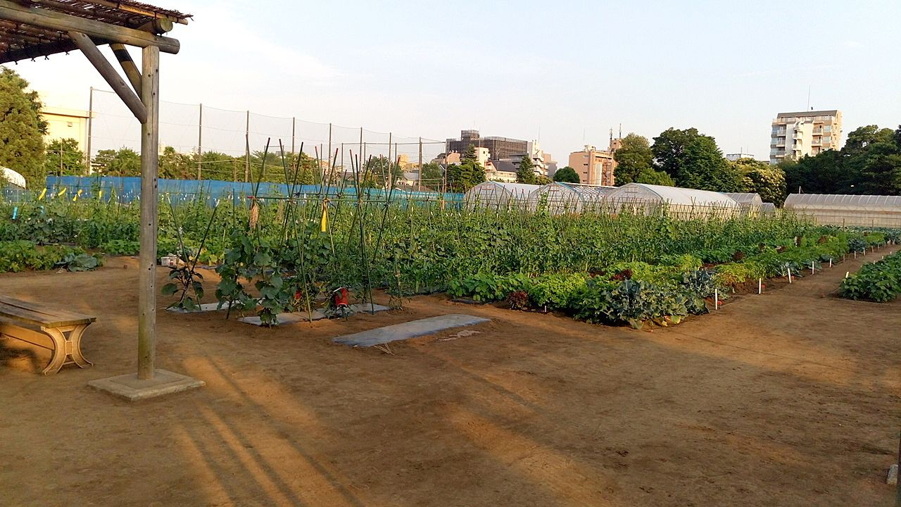 三鷹市に7か所と武蔵野市には8か所の市民農園があります。