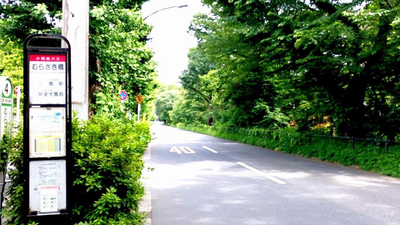 三鷹のむらさき橋の近くを歩くと緑がいっぱい