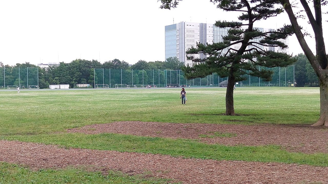 武蔵野中央公園、ただただ広い原っぱ広場 PART2