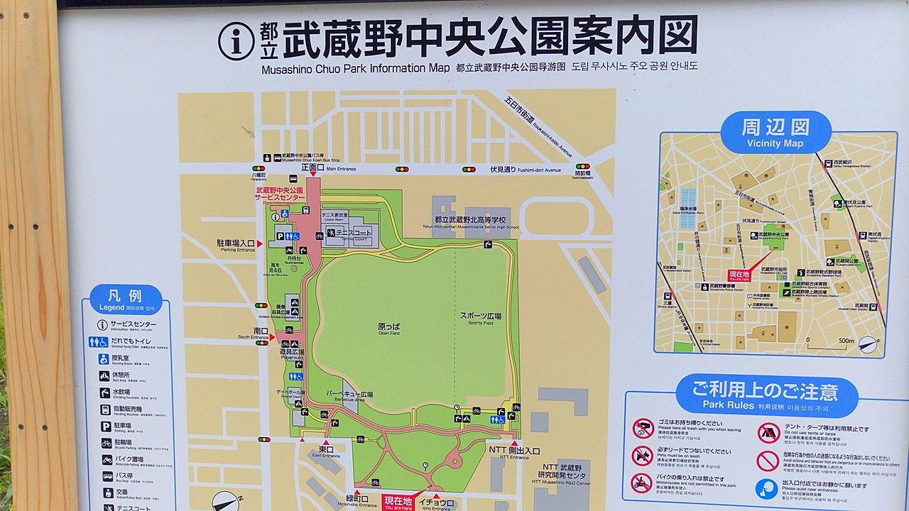 武蔵野中央公園案内図