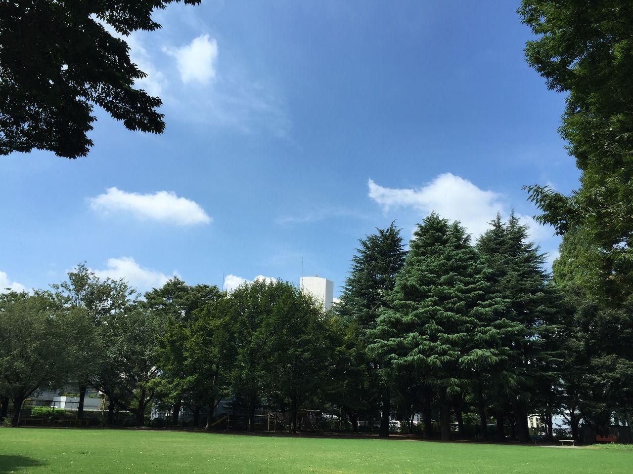 武蔵野市役所前にあるむさしの市民公園