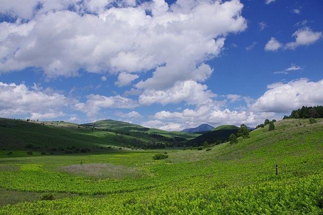 川上郷自然の村を利用してみませんか。今回はキノコツアーも開催します