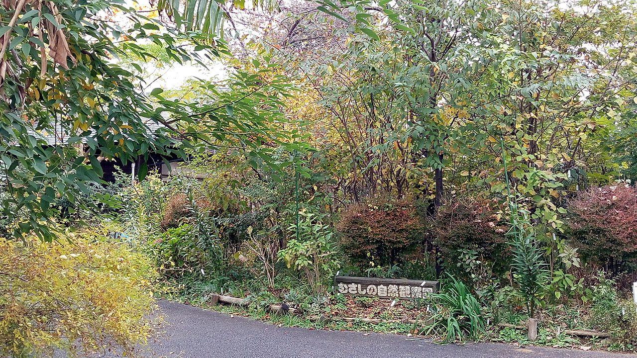 吉祥寺北町にあるむさしの自然観察園