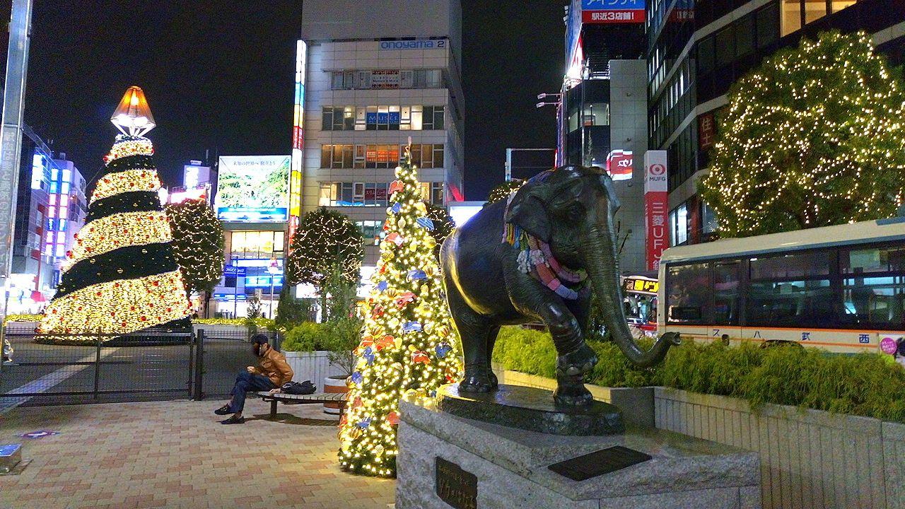 吉祥寺駅前はな子と楽しむイルミネーション