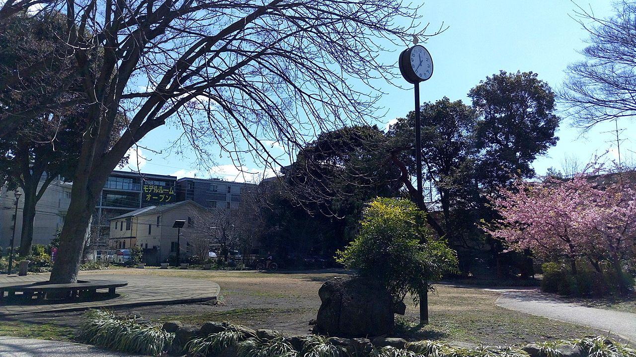 中央通り桜並木公園