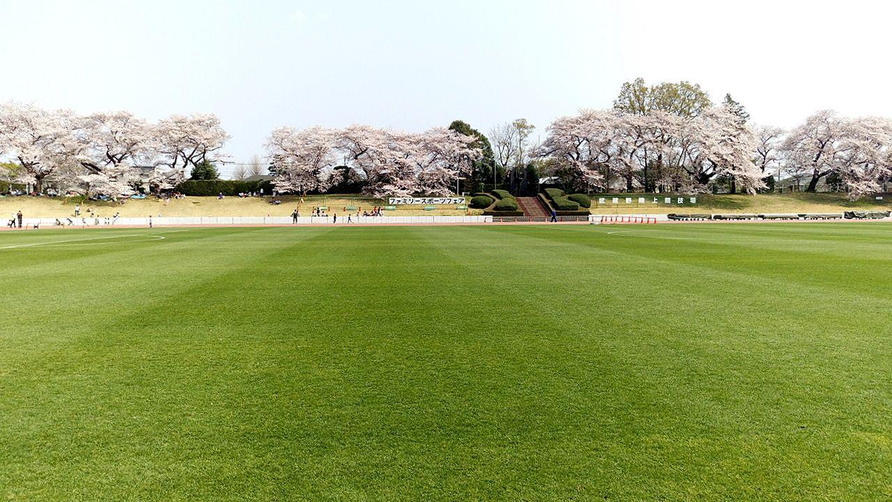 武蔵野桜まつりでは陸上競技場は解放されます