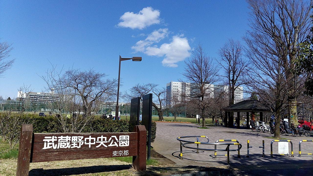 武蔵野市の武蔵野中央公園で元気に遊ぶ季節がきました