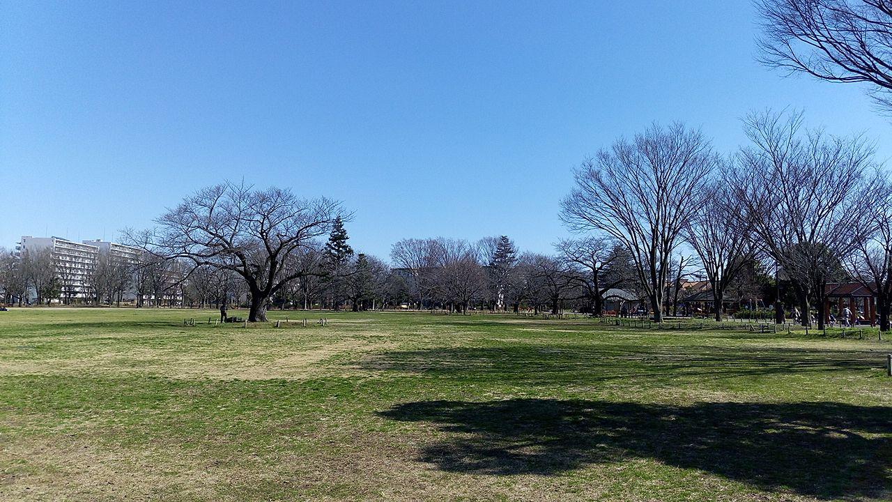 武蔵野市武蔵野中央公園