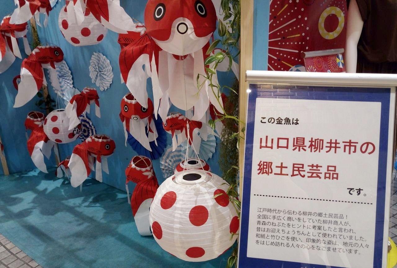 山口県柳井市の金魚