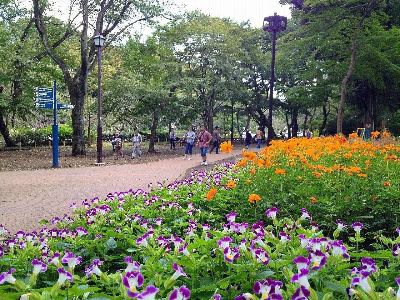 三鷹市には井之頭公園や野川公園があります
