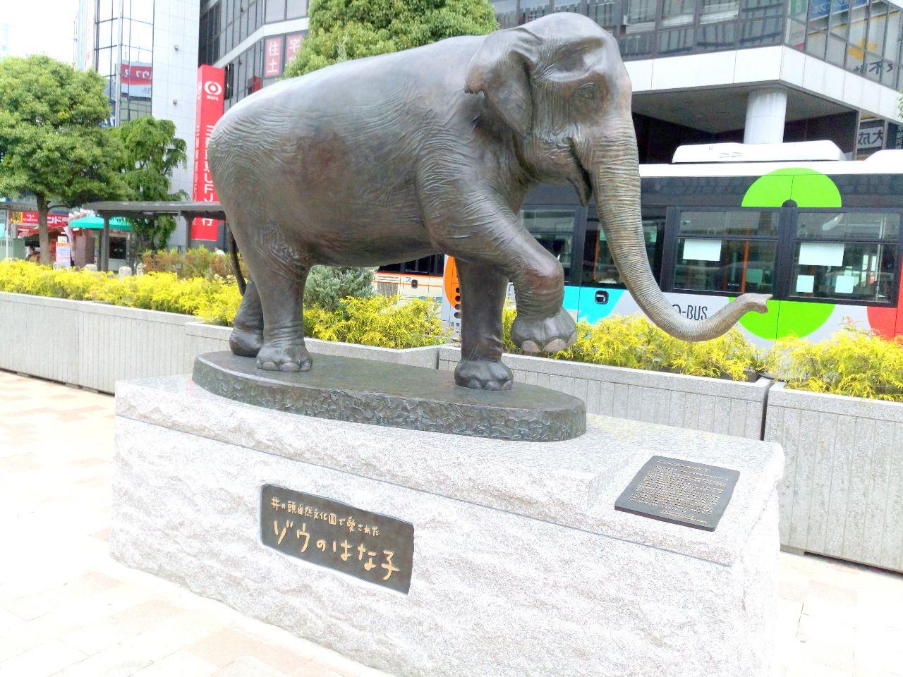2016年に亡くなった井之頭動物園のはな子の像が吉祥寺駅前にできました