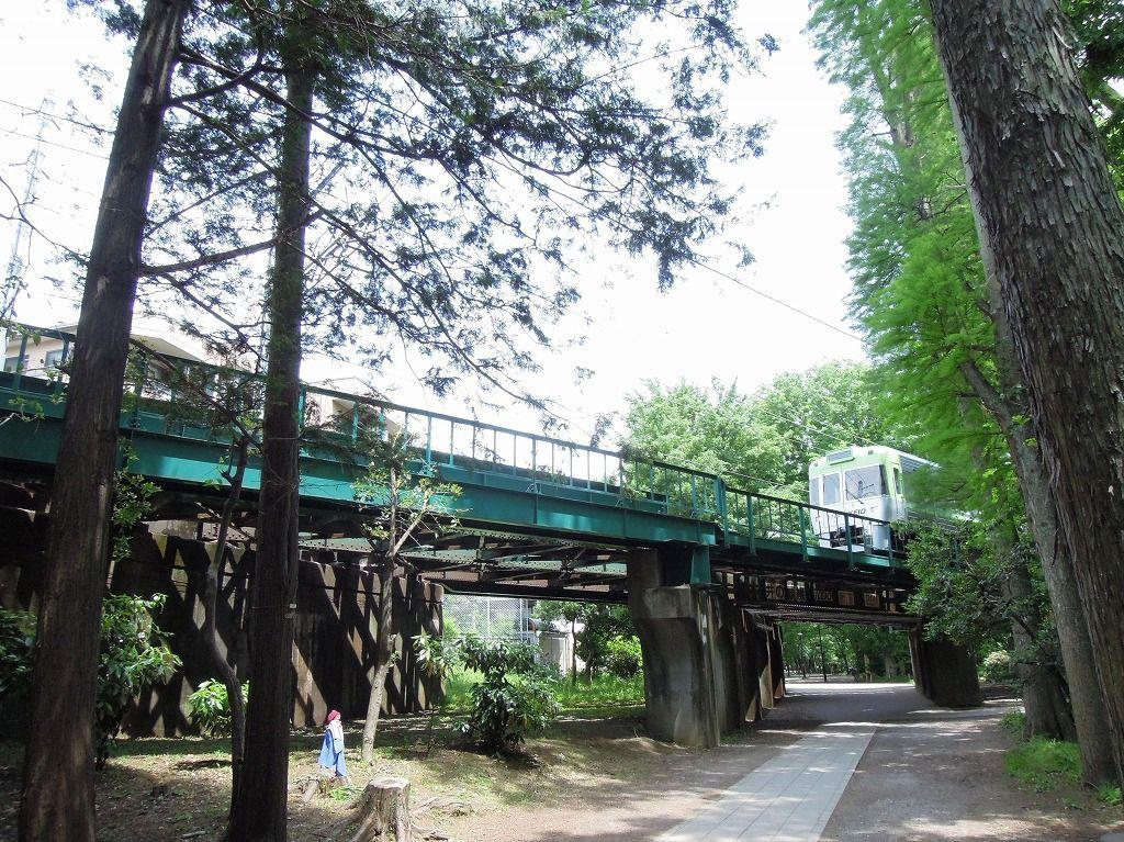吉祥寺から渋谷まで走る井の頭線 井の頭公園の鉄橋は緑が多く素敵な眺めです