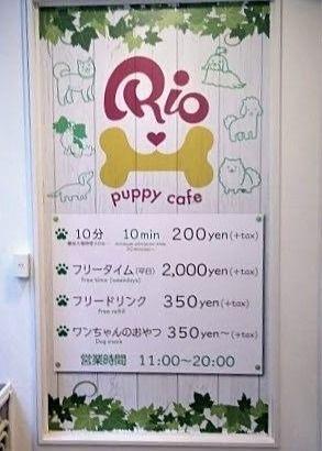 吉祥寺の犬カフェRio