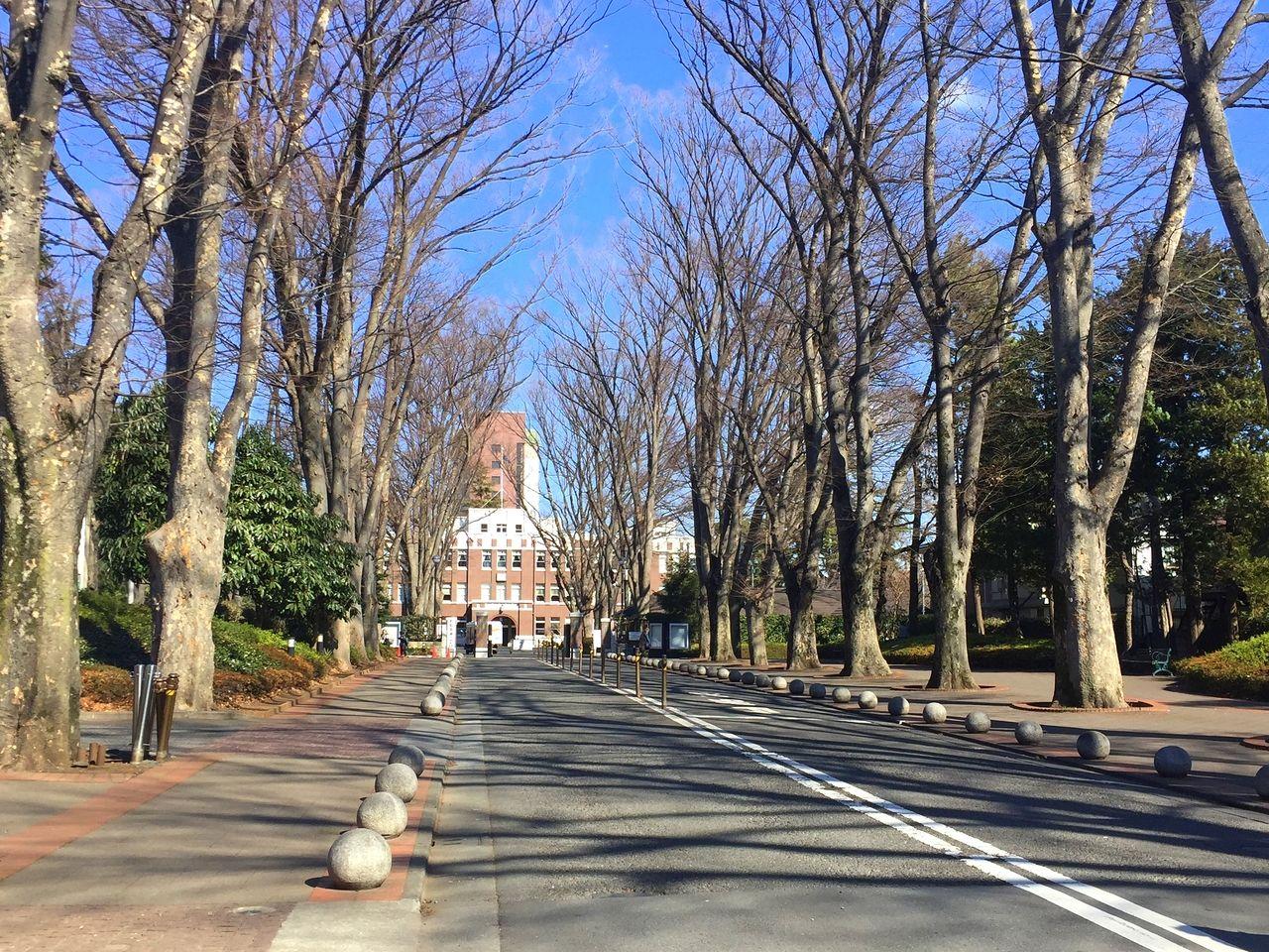武蔵野市、成蹊大学