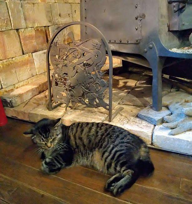 暖炉の横に陣取っている猫は可愛すぎる「山猫軒」