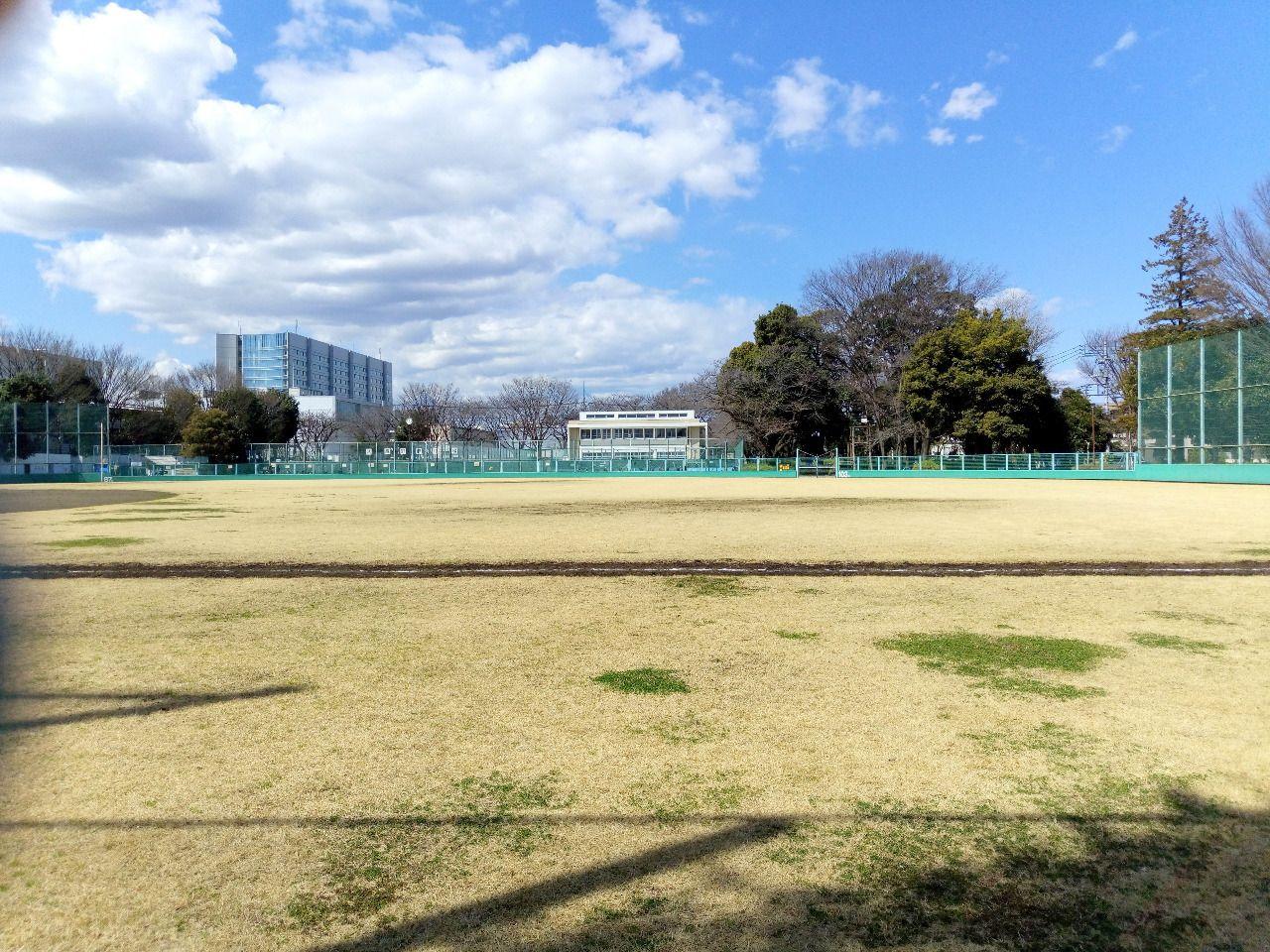 武蔵野市役所隣の野球場は広く明るい