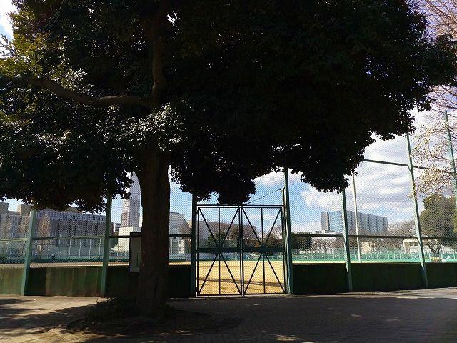 武蔵野市役所横の野球場
