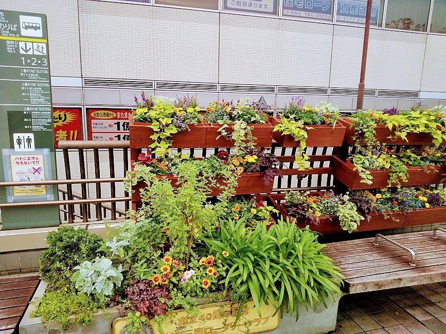 南口の寄せ植え花壇