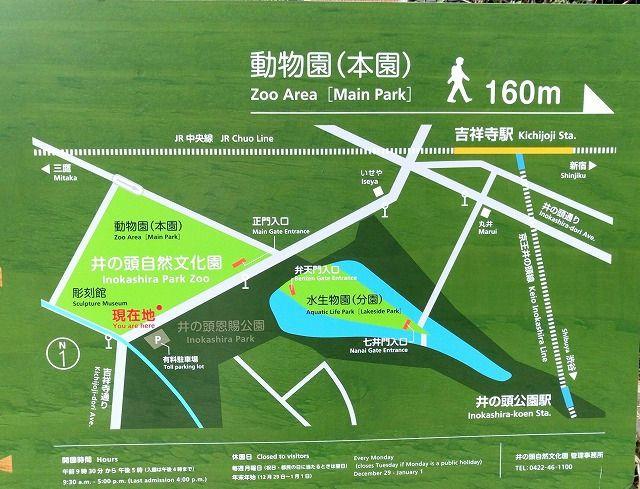 2017年の100周年を迎える井之頭公園。皆に愛される公園です