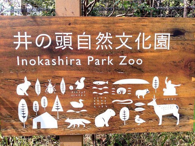 井之頭公園は開園100周年。色々なイベントでゴールデンウイークは楽しもう