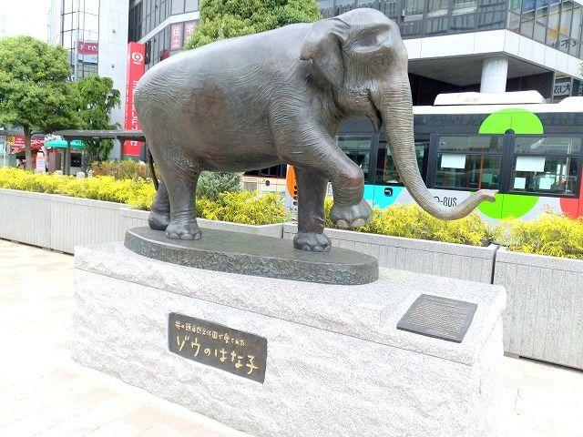 井之頭公園のアジアゾウのはな子は2016年5月に亡くなった。皆に愛されたはな子の像ができました