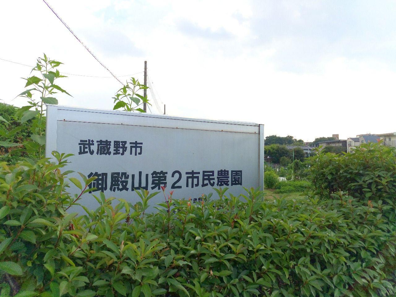 武蔵野市 市民農園