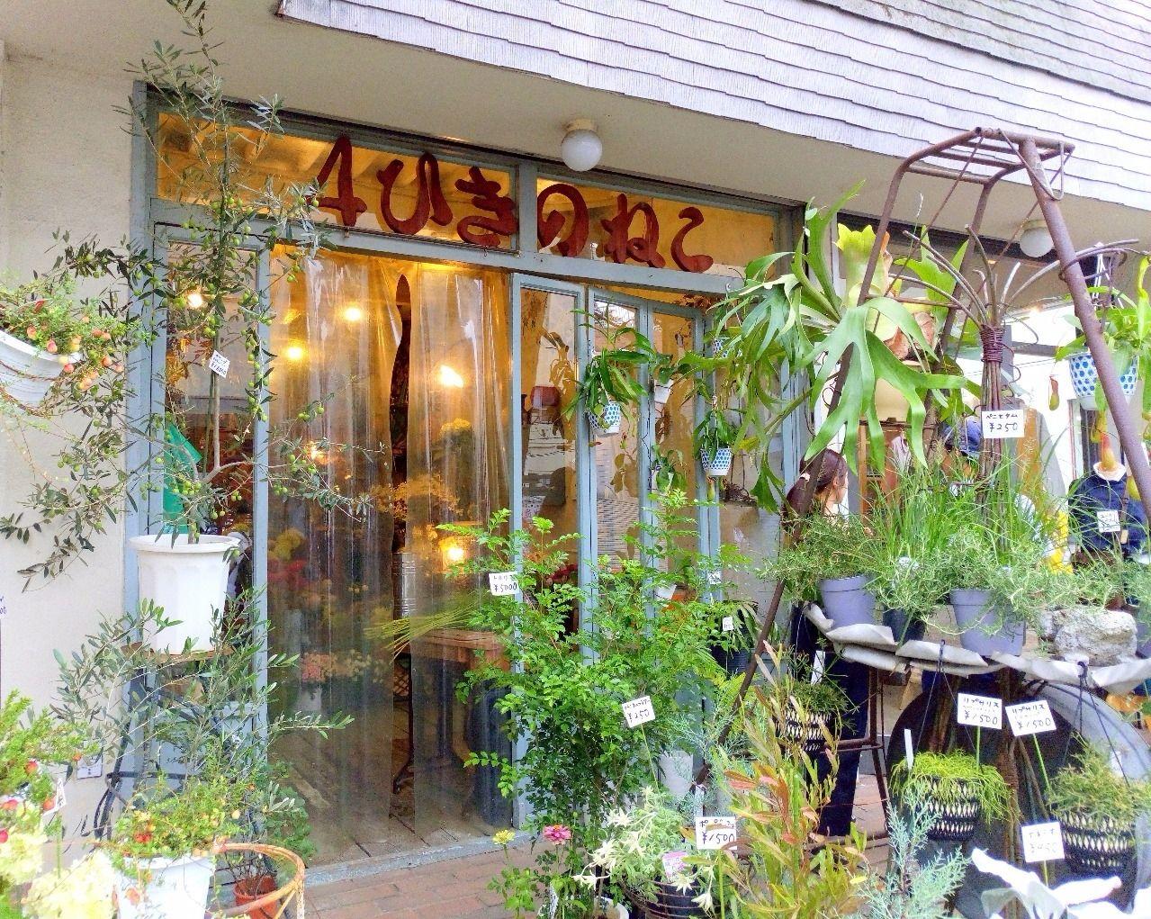 大正通りにある個性的な花屋さん 4ひきのねこ