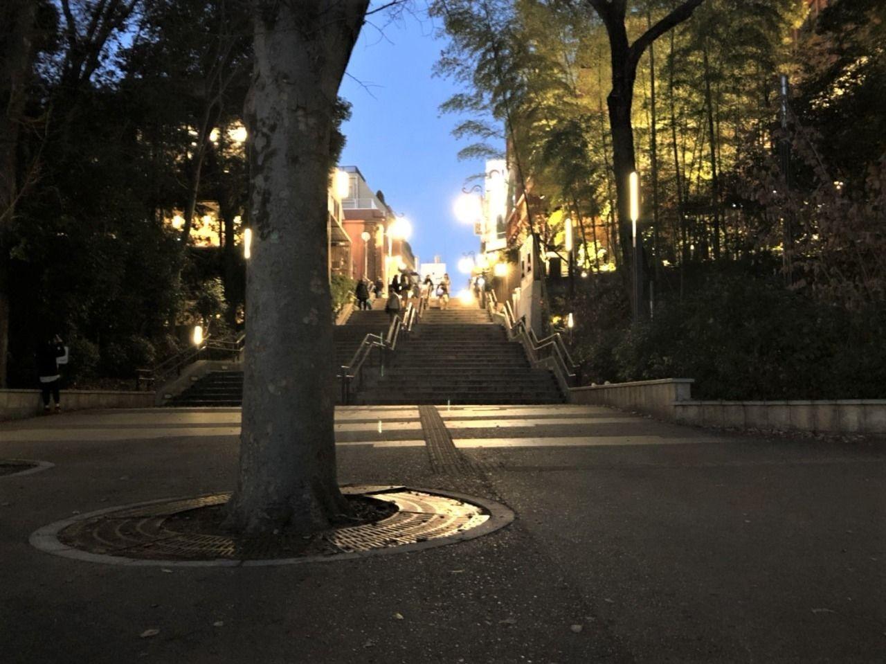 井之頭公園の夕方はライトも変わりロマンチック