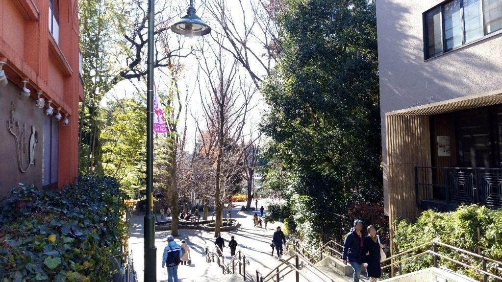井之頭公園の階段