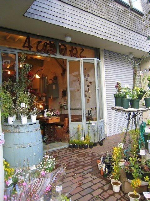 吉祥寺大正通りにある花屋さん4ひきのねこ