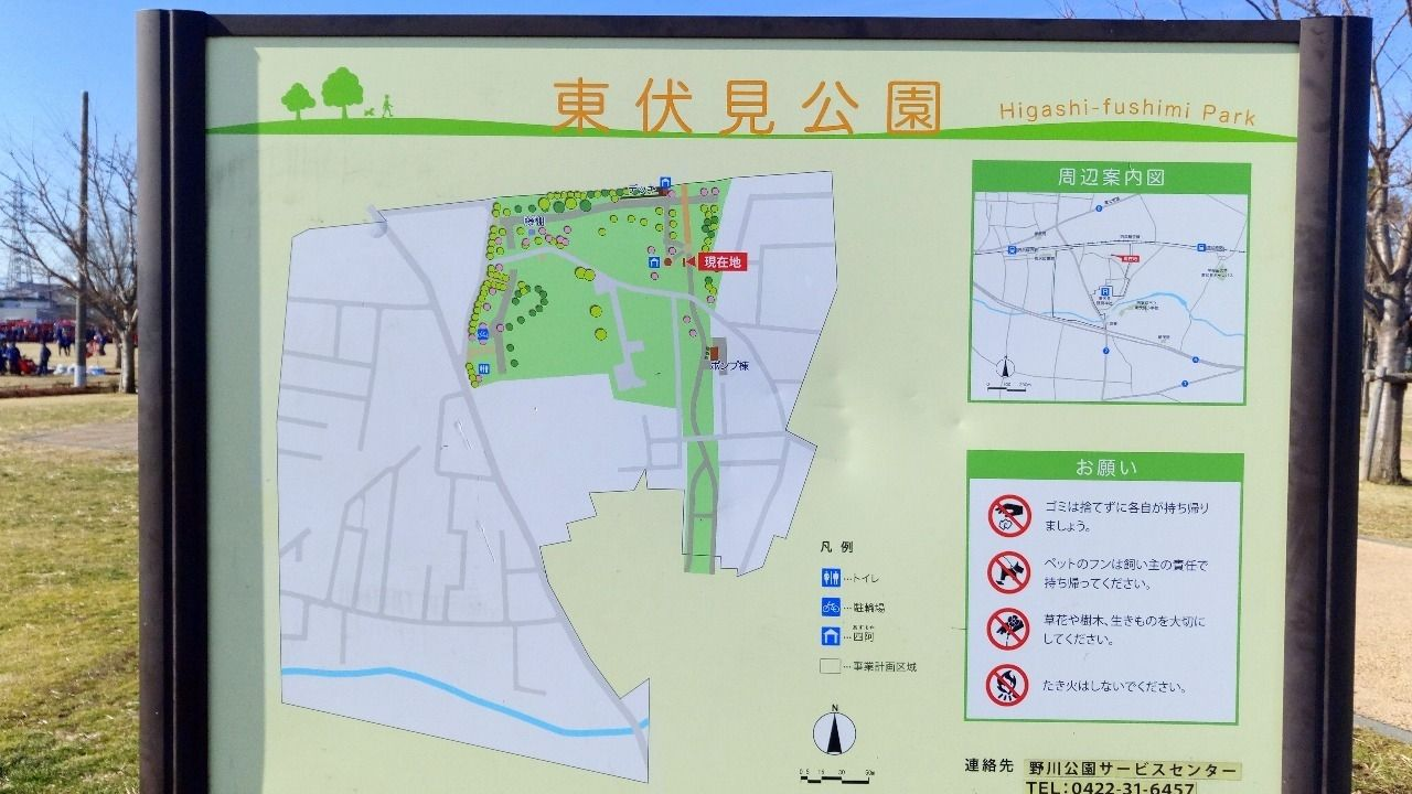 東伏見稲荷神社の近くの大きな公園