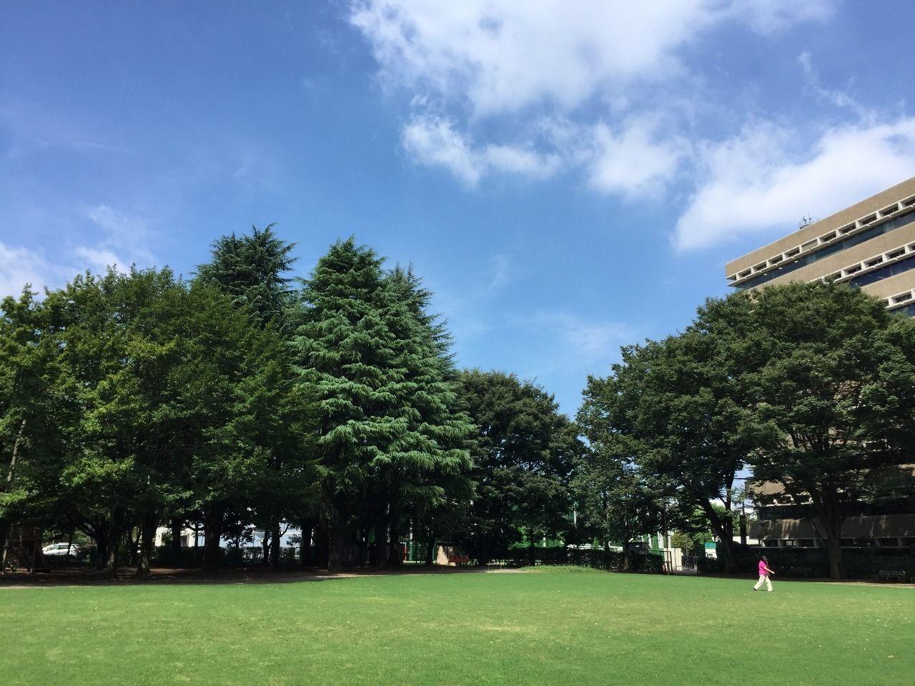 武蔵野市役所横の中央公園で桜まつり