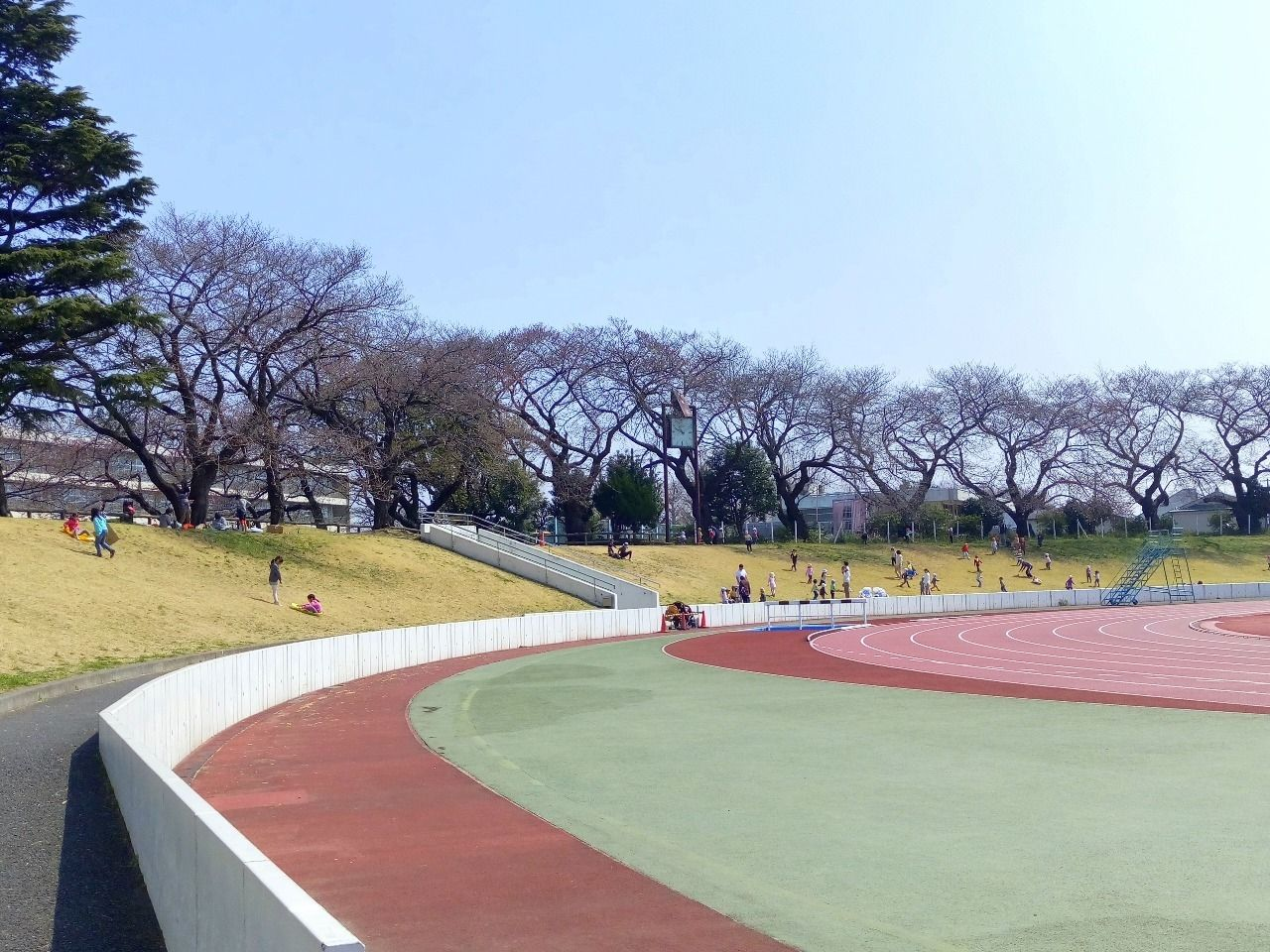 武蔵野市役所横の陸上競技場は桜ができれい