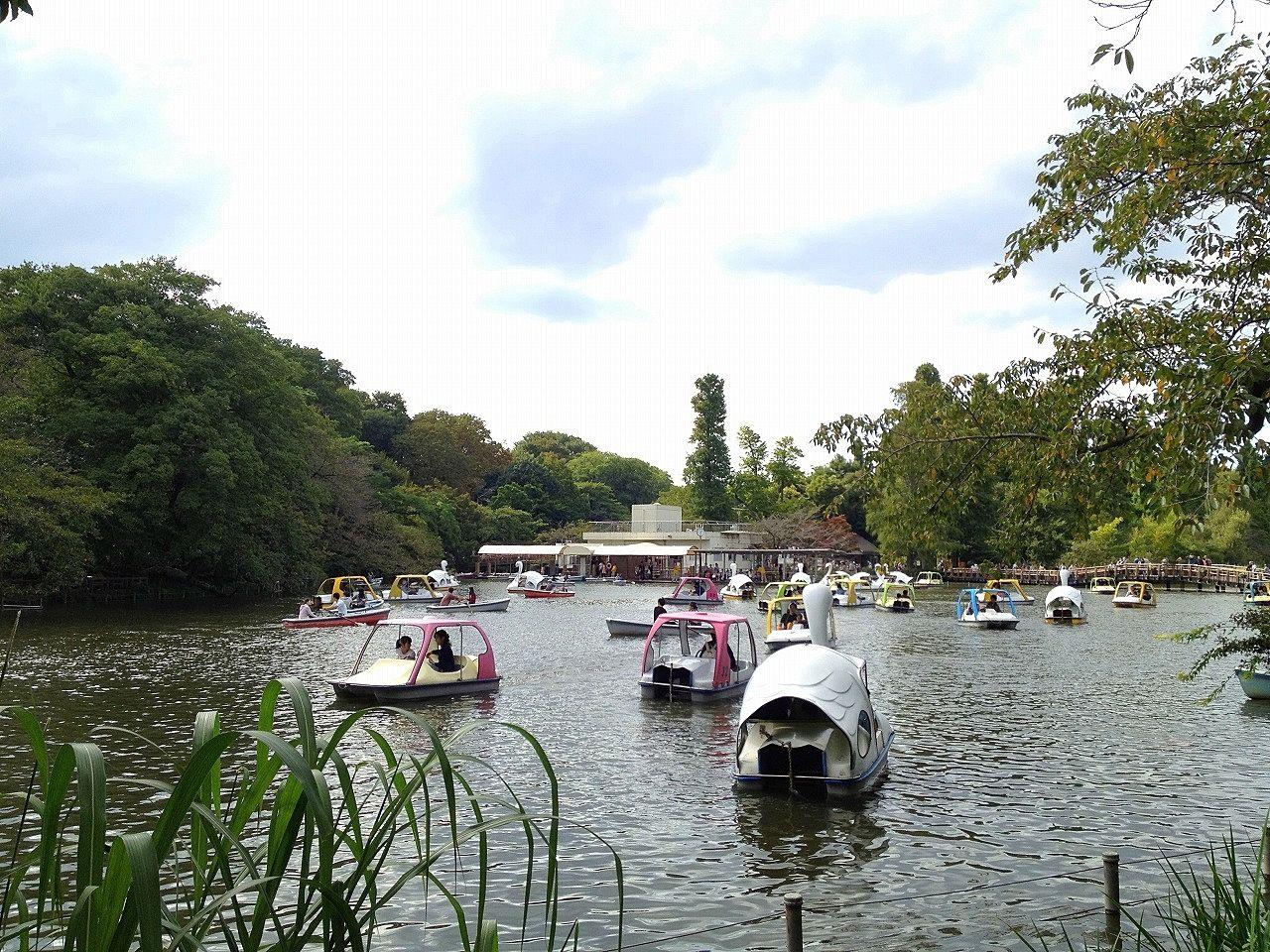 吉祥寺の井之頭公園のボートは600円からです